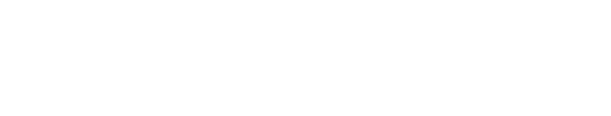 LAND – Local Audiovisual Network & Development